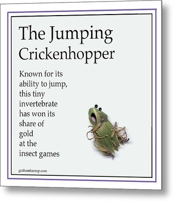 The Jumping Crickenhopper Metal Print by Graham Harrop