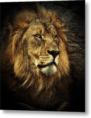 Metal Print featuring the mixed media The King by Elaine Malott