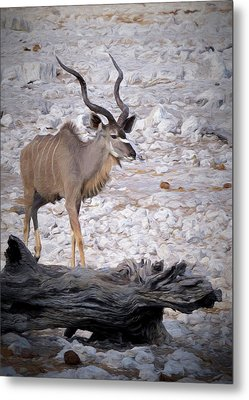 Metal Print featuring the digital art The Kudu In Namibia by Ernie Echols