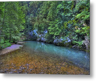 The Kupa River Metal Print by Don Wolf