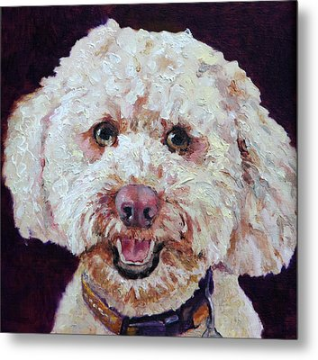 The Labradoodle Metal Print by Enzie Shahmiri