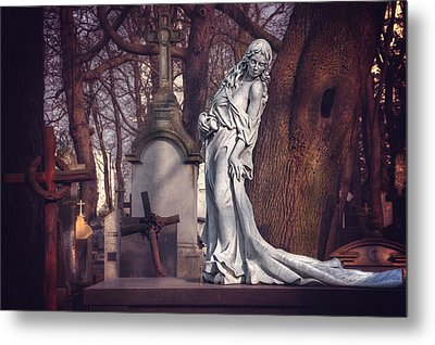 The Lady Of Powazki Metal Print by Carol Japp