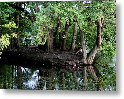 Metal Print featuring the photograph The Lake by Paul SEQUENCE Ferguson             sequence dot net