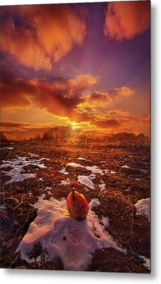 Metal Print featuring the photograph The Last Pumpkin by Phil Koch