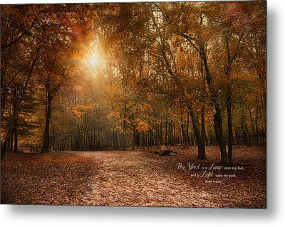 Metal Print featuring the photograph The Light by Robin-Lee Vieira