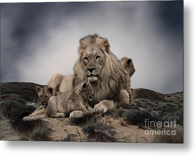Metal Print featuring the photograph The Lions by Christine Sponchia