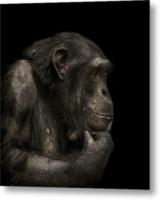 The Listener Metal Print by Paul Neville
