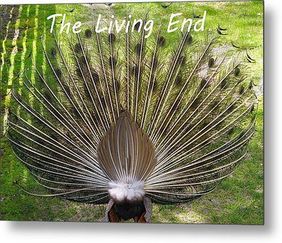 The Living End Metal Print by Lanis Rossi