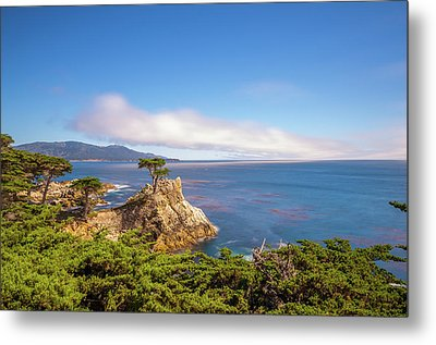 Metal Print featuring the photograph The Lone Cypress Pebble Beach by Scott McGuire
