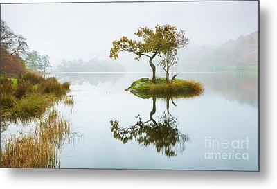 The Lone Tree - Rydal Water Metal Print by Tony Higginson