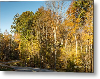 The Long And Winding Road - Natchez Trace Metal Print by Debra Martz