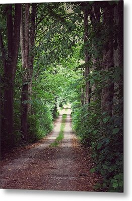Metal Print featuring the photograph The Long Driveway by Karen Stahlros