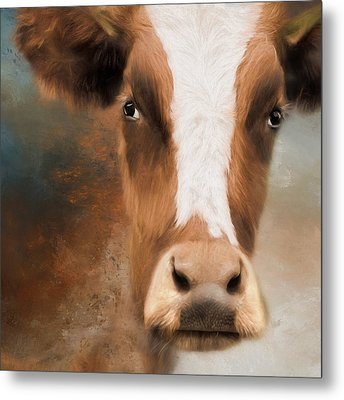 Metal Print featuring the photograph The Look by Robin-Lee Vieira