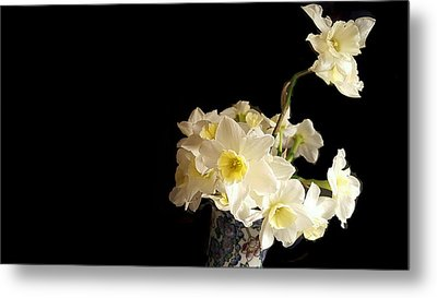 The Lookout Scout Daffodil Metal Print by ARTography by Pamela Smale Williams
