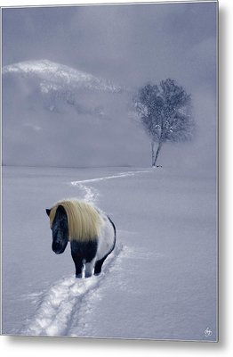 The Mane And The Mountain Metal Print by Wayne King