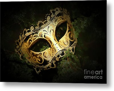 Metal Print featuring the photograph The Mask by Darren Fisher