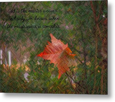 The Master Weaver Metal Print by Judy  Waller
