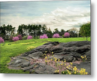 Metal Print featuring the photograph The Meadow Beyond by Jessica Jenney