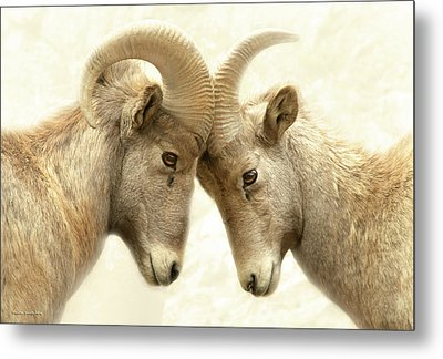 The Meeting Of The Minds Metal Print