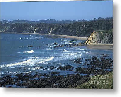 The Mendocino Coast Metal Print