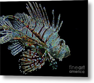 The Mighty Lion Fish Metal Print by Carol F Austin