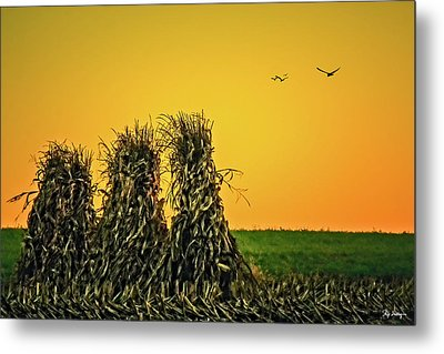 The Migration Of Summer Metal Print by Skip Tribby