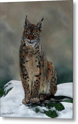 The Missing Lynx Metal Print