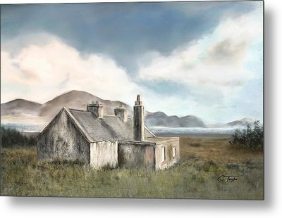 The Mist Of Moorland Metal Print by Colleen Taylor