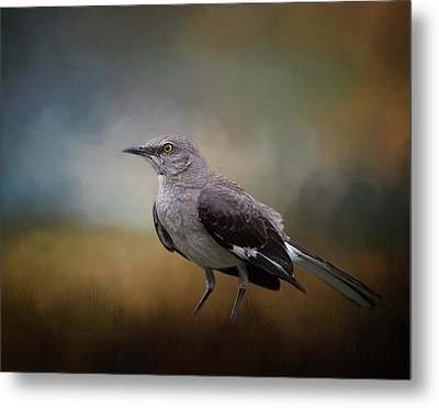 Metal Print featuring the photograph The Mockingbird A Bird Of Many Songs by David and Carol Kelly