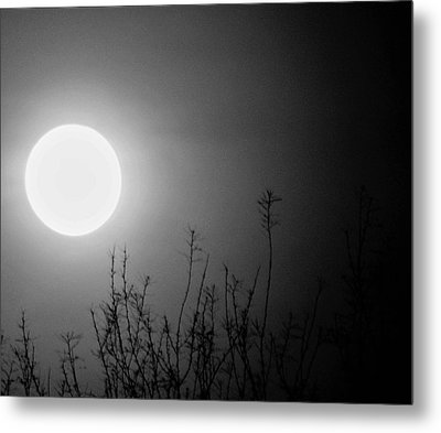 The Moon And The Stars Metal Print