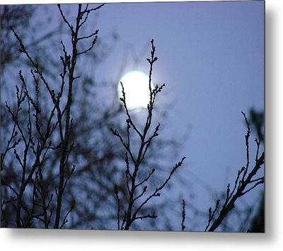 The Moon Metal Print by Liz Vernand