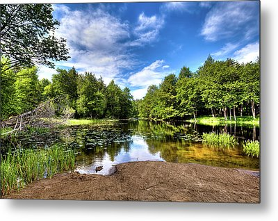 Metal Print featuring the photograph The Moose River At Covewood by David Patterson