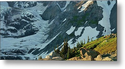 The Mountain Goat  Metal Print by Scott Nelson