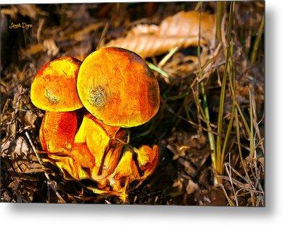 The Mushroom - Mm Metal Print by Leonardo Digenio