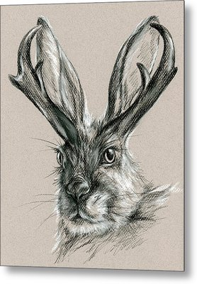 The Mythical Jackalope Metal Print