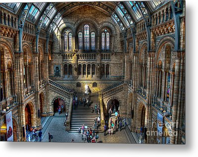 The Natural History Museum London Uk Metal Print by Donald Davis