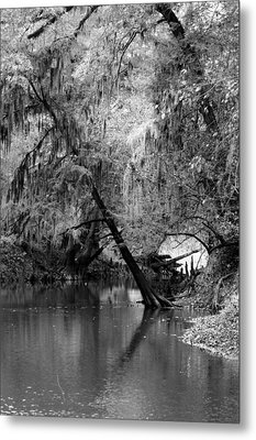 The Neuse Metal Print by Lisa Stanley
