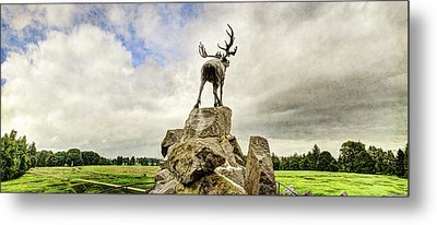 The Newfoundland Caribou Above The Trenches Metal Print by Weston Westmoreland
