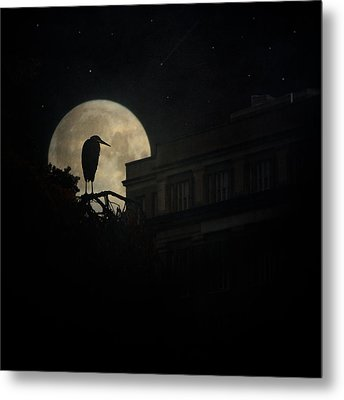 Metal Print featuring the photograph The Night Of The Heron by Chris Lord