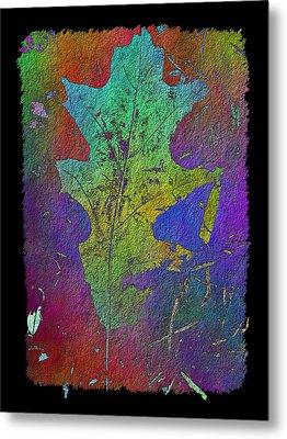 The Oak Leaf Metal Print by Tim Allen