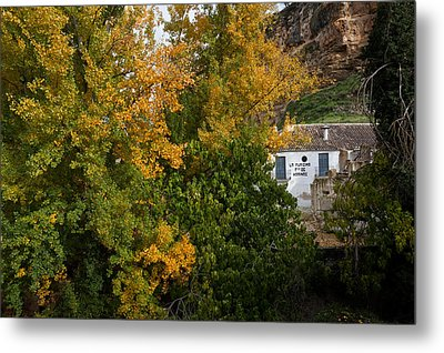 The Old Flour Mill And Elm Trees Metal Print