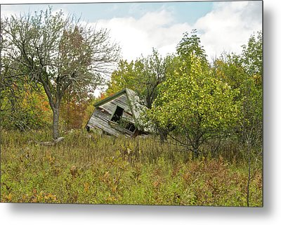 The Old Homestead And Orchard Metal Print by Michael Peychich