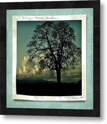 The Old Oak Metal Print by Bonnie Bruno