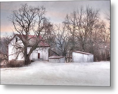 The Onion Snow Metal Print by Lori Deiter