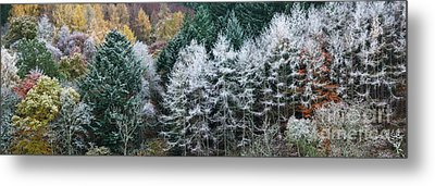 The Onset Of Winter Metal Print