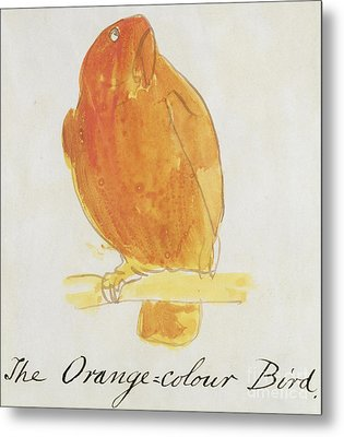 The Orange Color Bird Metal Print by Edward Lear
