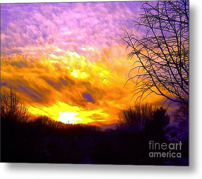 The Other Side Of The Rainbow Metal Print by Robyn King