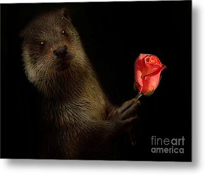 Metal Print featuring the photograph The Otter by Christine Sponchia