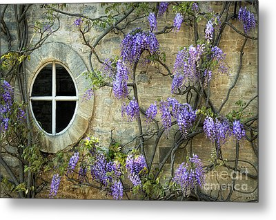 The Oval Window Metal Print by Tim Gainey