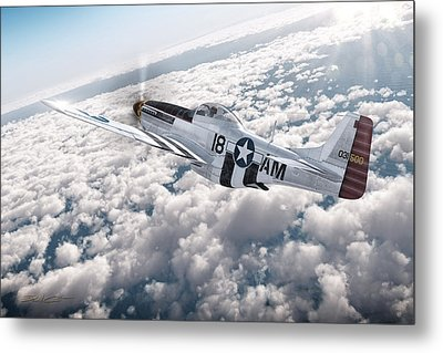 The P-51 Mustang Metal Print by David Collins